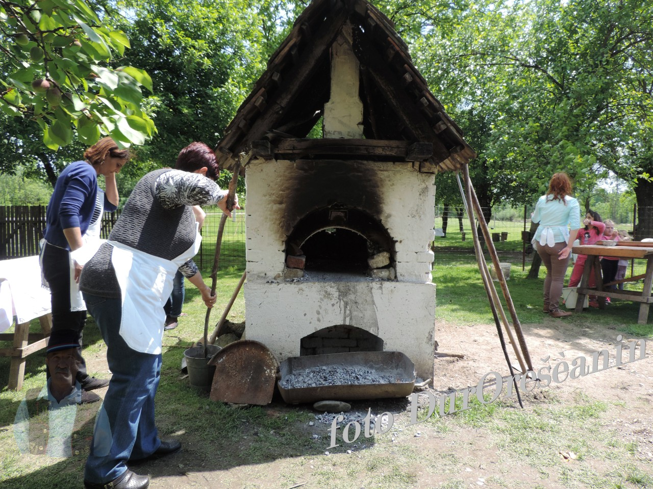 SLAVONSKI SAMAC - Plemica stan  2016