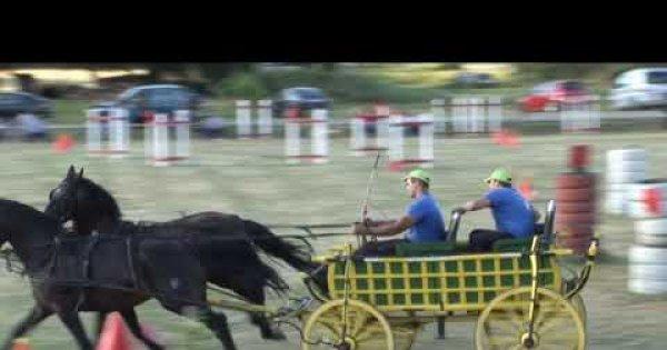 2020 Stari Perkovci- Utakmica vožnja seljački kola